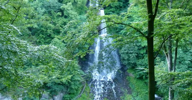 Naturpark Thüringer Wald - DAHEIM im Landhaus Talblick Thüringen
